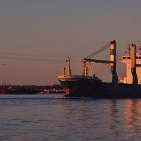 Ship Channel, Дир-Парк
