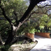 Salado Creek Greenway, San Antonio, Tx, Кирби