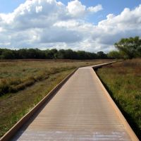Salado Creek Greenway, San Antonio, Кирби