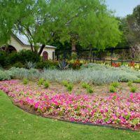Botanical Garden, Кирби