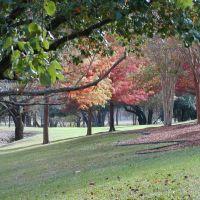 Autumn in Bel Meade Park, Кирби