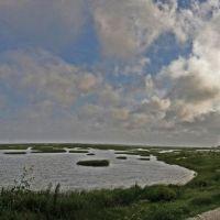 Estuary at Galveston, Комбес