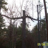 Cross in the woods near home, Либерти-Сити