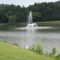 Town Lake Park in McKinney, Мак-Кинни