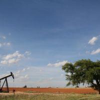 Seminole, Oil and Oak, Нью-Хоум