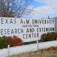 TAMU Research Facility Overton TX, Овертон
