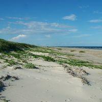 Padre Island National Seashore, Texas, Одем
