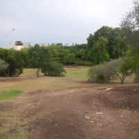 Trinity University Disc Golf course, Олмос-Парк