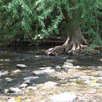 San Antonio River (Brackenridge Park), Олмос-Парк