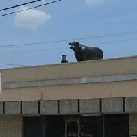 Plastic Bull on roof of building, Пасадена