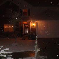 12027 Cottage Elm Ct, Пирленд