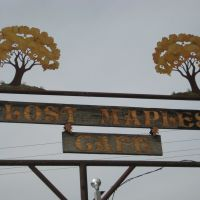 lost maples cafe, Пирсалл