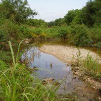 Salado Creek in San Antonio, Пирсалл