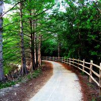 Denman Estate Park - Walking Trail, Пирсалл