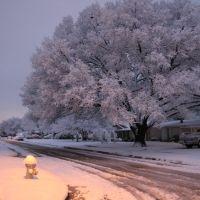 Winter Wonderland, Ричардсон