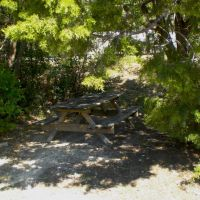 Hidden picnic table, Роллингвуд