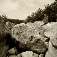 Rock in dry Barton Creek Greenbelt, Роллингвуд