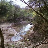 the green belt, Роллингвуд