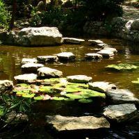 Zilker Botanical Garden, Роллингвуд