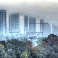 Austin Morning Fog, Роллингвуд