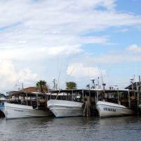 Mishos Seafood Lugger Fleet, Сагинау