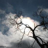 The Sun Comes Out, Сан-Анжело