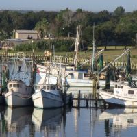 Fishing Boats Company, Террелл-Хиллс