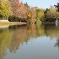 Reflection of autumn-colored trees in the water of the pond, Фармерс-Бранч