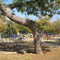 Playground near Farmers Branch City Hall, Фармерс-Бранч