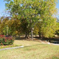Oran Good Park, Фармерс-Бранч
