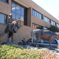 cowpoke and longhorn, Форт-Уэрт