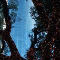 Festive Lights at Hermann Square (Wells Fargo Bank Plaza in back), Хьюстон