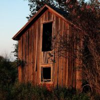 Ratty old barn, north of Garwood, Texas, Эль-Кампо