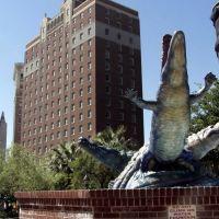 Crocs downtown El Paso TX, Эль-Пасо