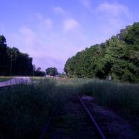 abandoned railroad tracks, Алачуа
