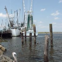 Apalachicola Shrimp Boats, Апалачикола