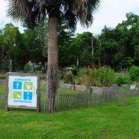 Apalachicola Community Garden, Апалачикола