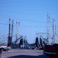Apalachicola Marina, Апалачикола