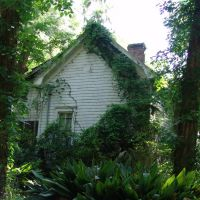large cracker house in the weeds, Archer Fla (4-30-2011), Арчер