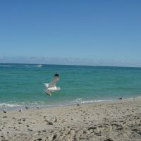 Haulover Park, Bal Harbour, FL, Бал-Харбор