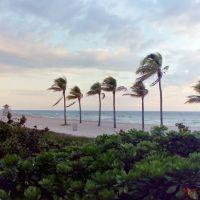Miami Beach, Fishermans Pier (マイアミビーチ フィッシャーマンズピア付近), Бал-Харбор