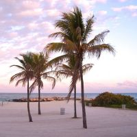 Haulover Beach Palms, Бал-Харбор