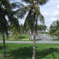 USA. Miami (64010973), Бал-Харбор