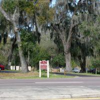 2014 02-25 Bartow, Florida Rte 17, Бартау