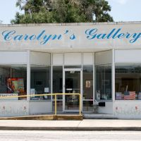 Carolyns Gallery at Bartow, FL, Бартау