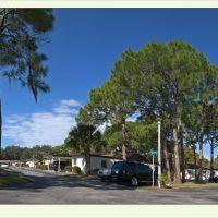 Florida, Sarasota 2011:01:07, Би-Ридж