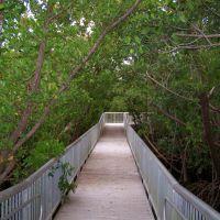 Mangrove Park Walkway, Бойнтон-Бич