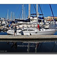 Twin Dolphin Marina, Bradenton, FL, Брадентон