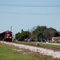 South Central Florida Express Railroad Sugar Cane Train at Clewiston, FL, Гарлем