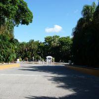 Palm Beach Zoo, Глен-Ридж